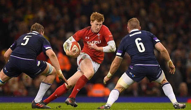 Patchell Headline Image.jpg